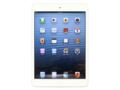 ƻ��iPad mini��32GB/WIFI�棩