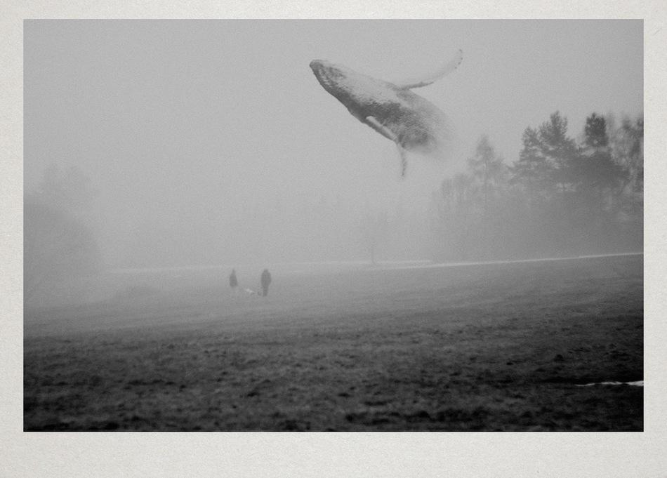 孤独黑白风景图图片