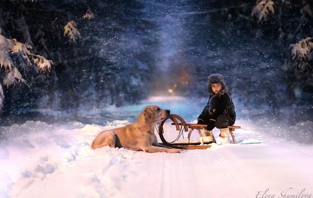 温暖人心的力量 儿童与动物的合影照片