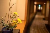 满满日和风 佳能6D探访钟山苑日式酒店