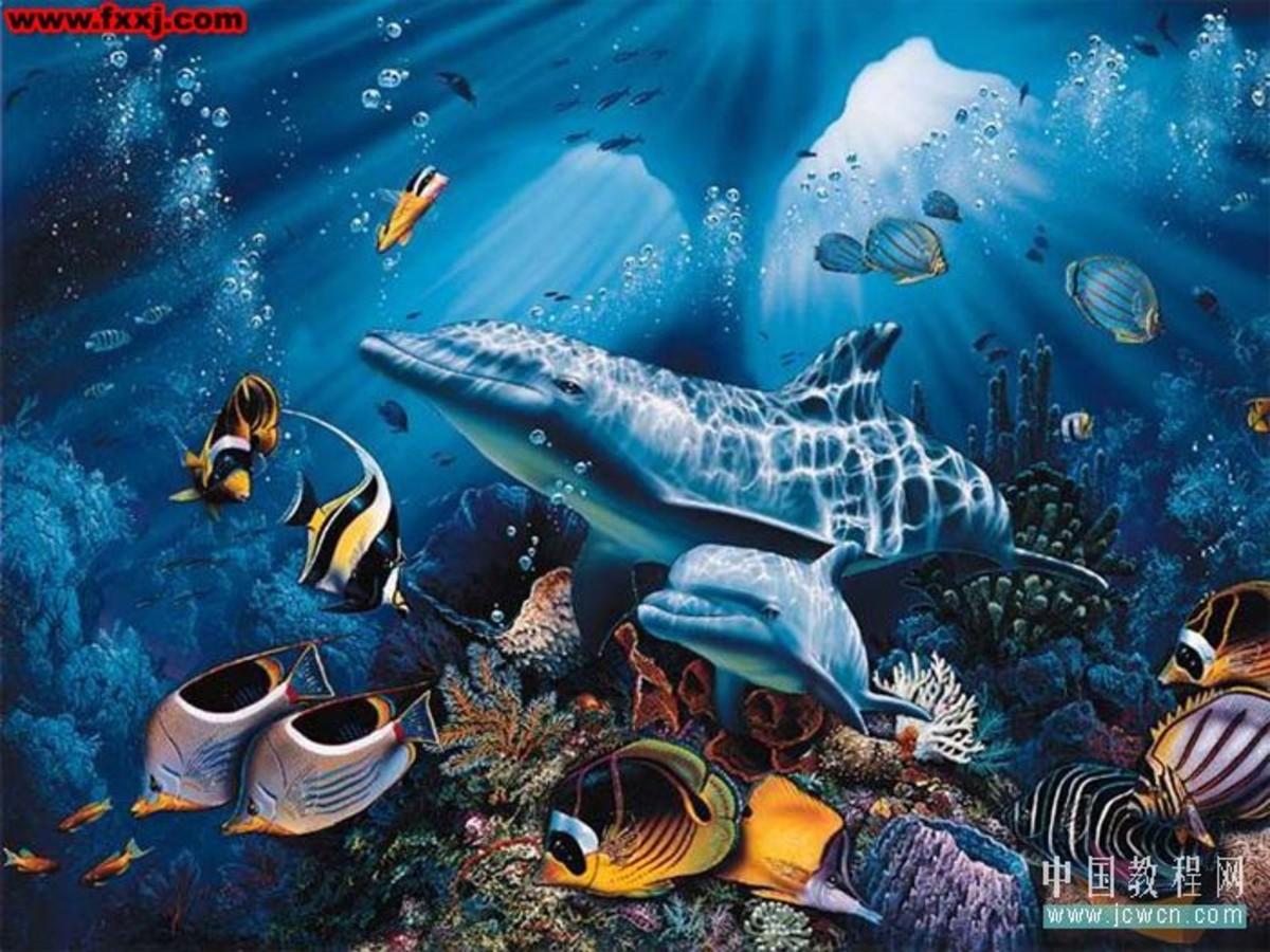 海底图片 高清 ps素材