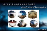 """飞机""""大头""""莫名喜感 看法国老司机照片"""