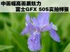中画幅高画质魅力 富士GFX 50S实拍样张