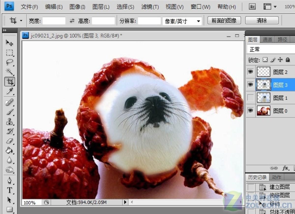 【高清图】photoshop大搞怪:合成可爱海豹型荔枝图4建筑设计珠海和深圳图片