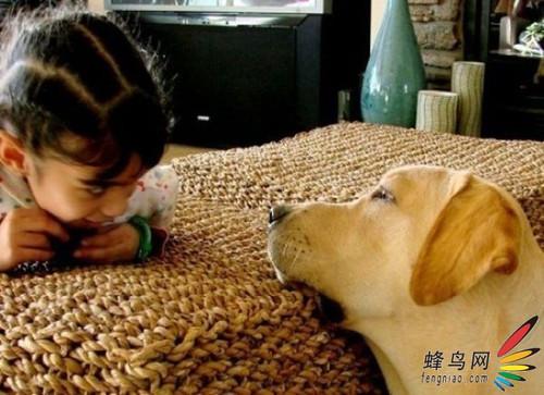 小朋友与动物相处温馨瞬间