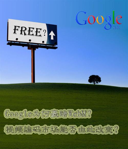 视频标准之争升级 谷歌WebM一锤定音?