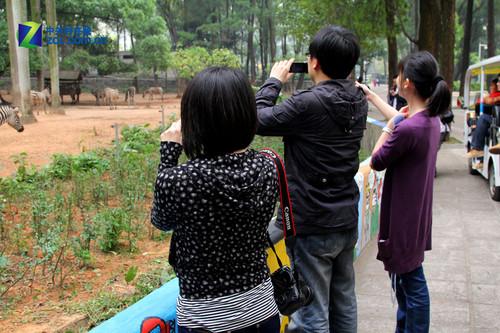 佳能dv广州动物园试用活动
