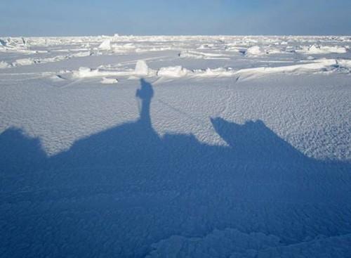 北极探险终点站——征服北极点