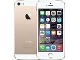 苹果iPhone 5S(双4G)