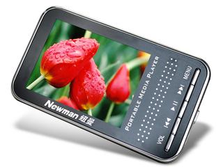纽曼Q300(2GB)