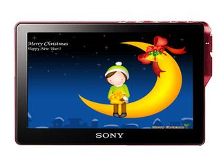 索尼PMX-M75(2GB)