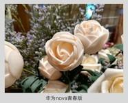 华为nova青春版(WAS-AL00/全网通)样张秀0
