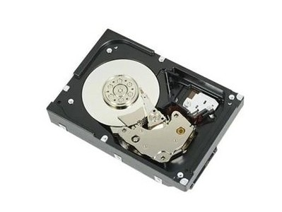 戴尔 1TB 7.2K RPM SAS 6Gbps 512n 3.5英寸硬盘