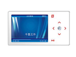 多彩DLA-810B(2GB)